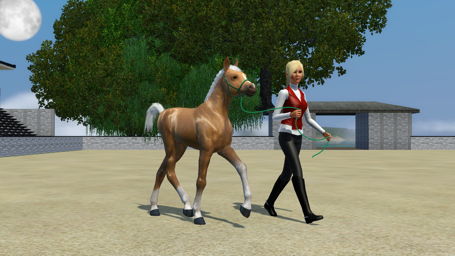 Great Wallpaper Horse Couple - tumblr_static_screenshot-344  Image_759952.jpg