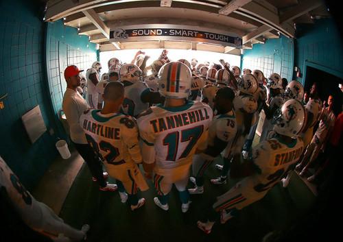 Fuck Yeah Miami Dolphins