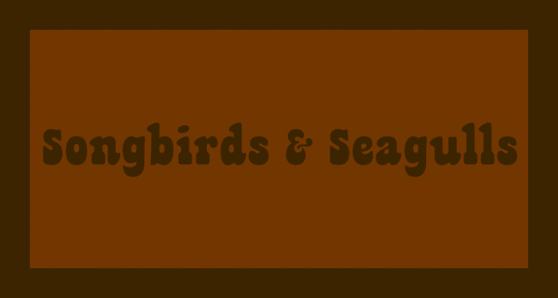 Songbirds & Seagulls