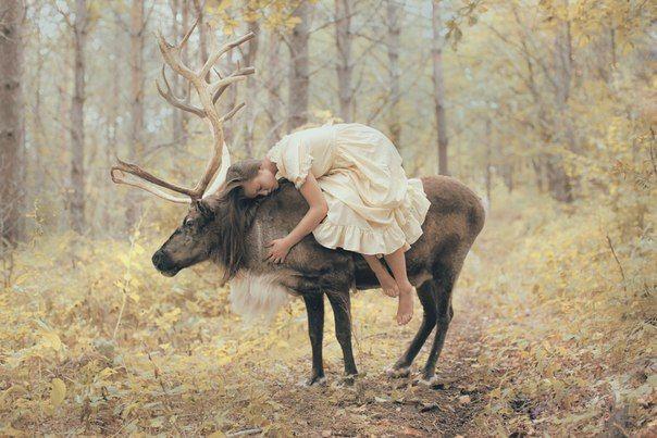 tumblr_static_deer_and_girl__l_.jpg