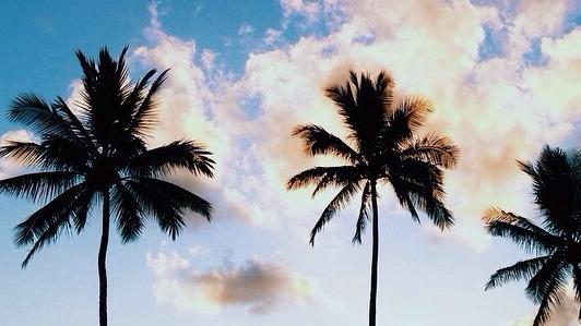 instagram summer Tumblr