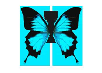 Bildresultat för butterfly effect