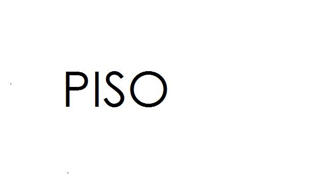 PISO proyecto