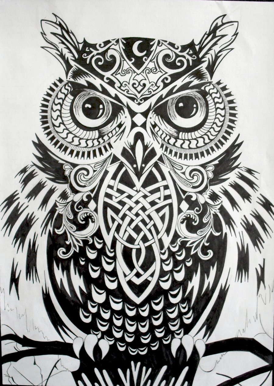 Gamemakertech Info Images Owl Tattoo Drawing Tumblr