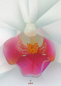 Orchid - Graphic Art Print