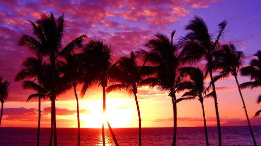 「Hawaii tumblr」の画像検索結果