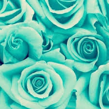 Mint Green Wallpapers For You To Download