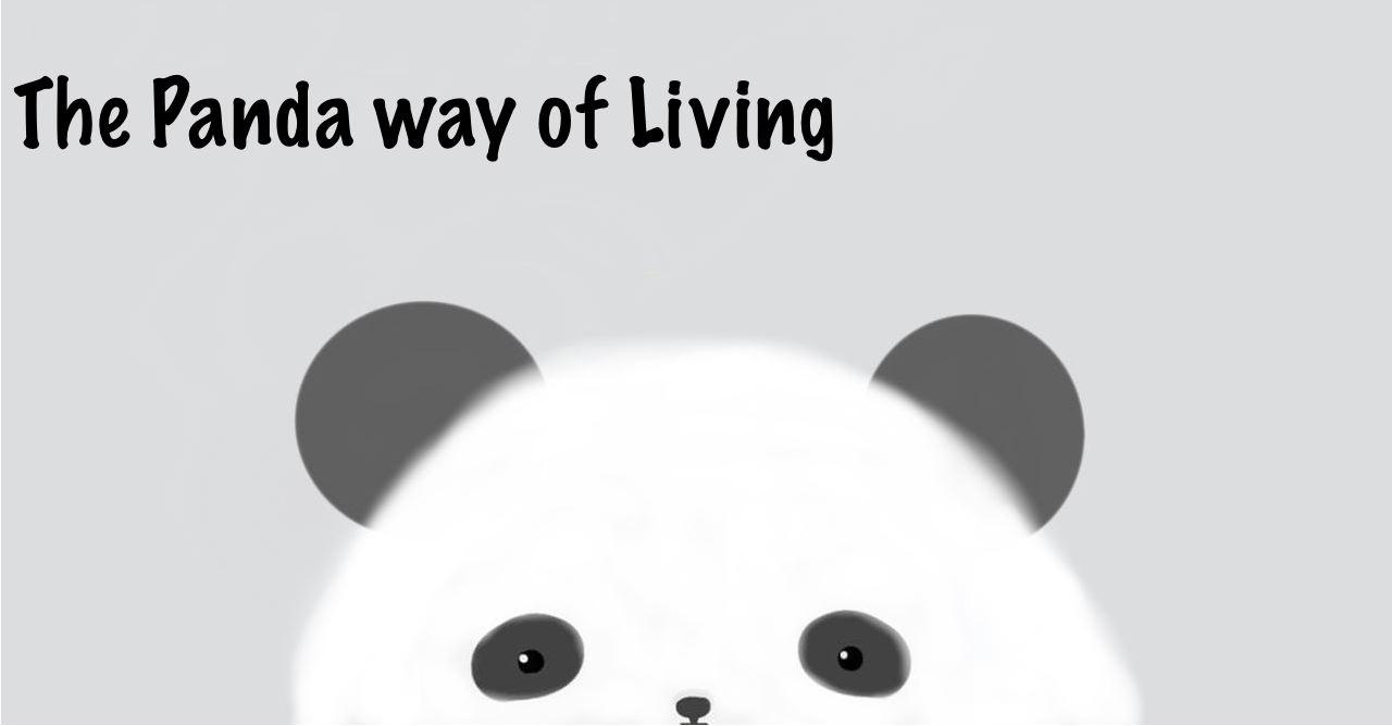 Panda Quotes Panda Tumblr Quotes