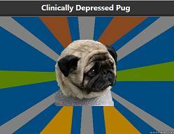 Clinically Depressed Pug