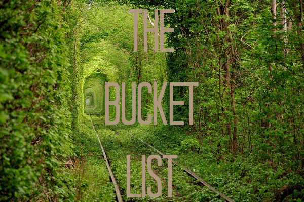 Guys Bucket List The Bucket List