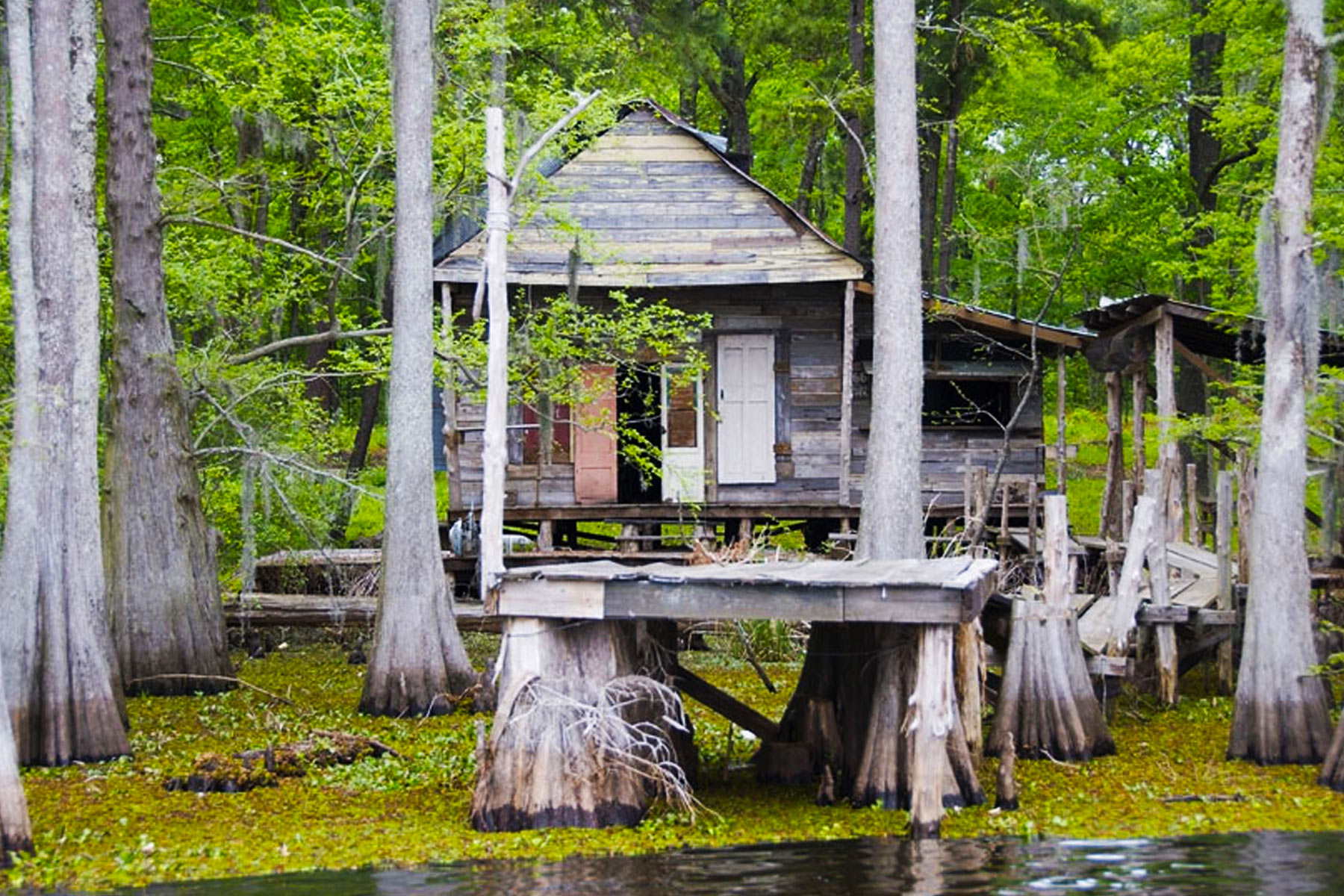 backwater witchcraft bayou that 39 s lovely what sort of magic do you. Black Bedroom Furniture Sets. Home Design Ideas