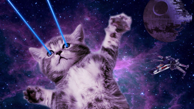 Cats Game Lasers