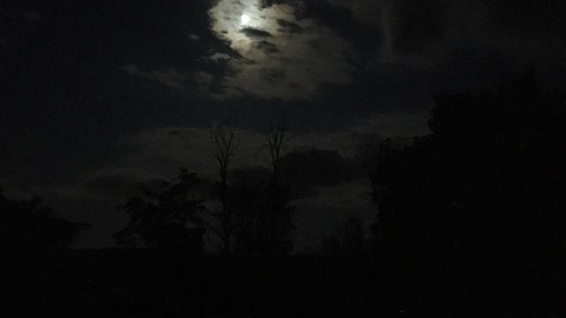 aries sun pisces moon | Tumblr
