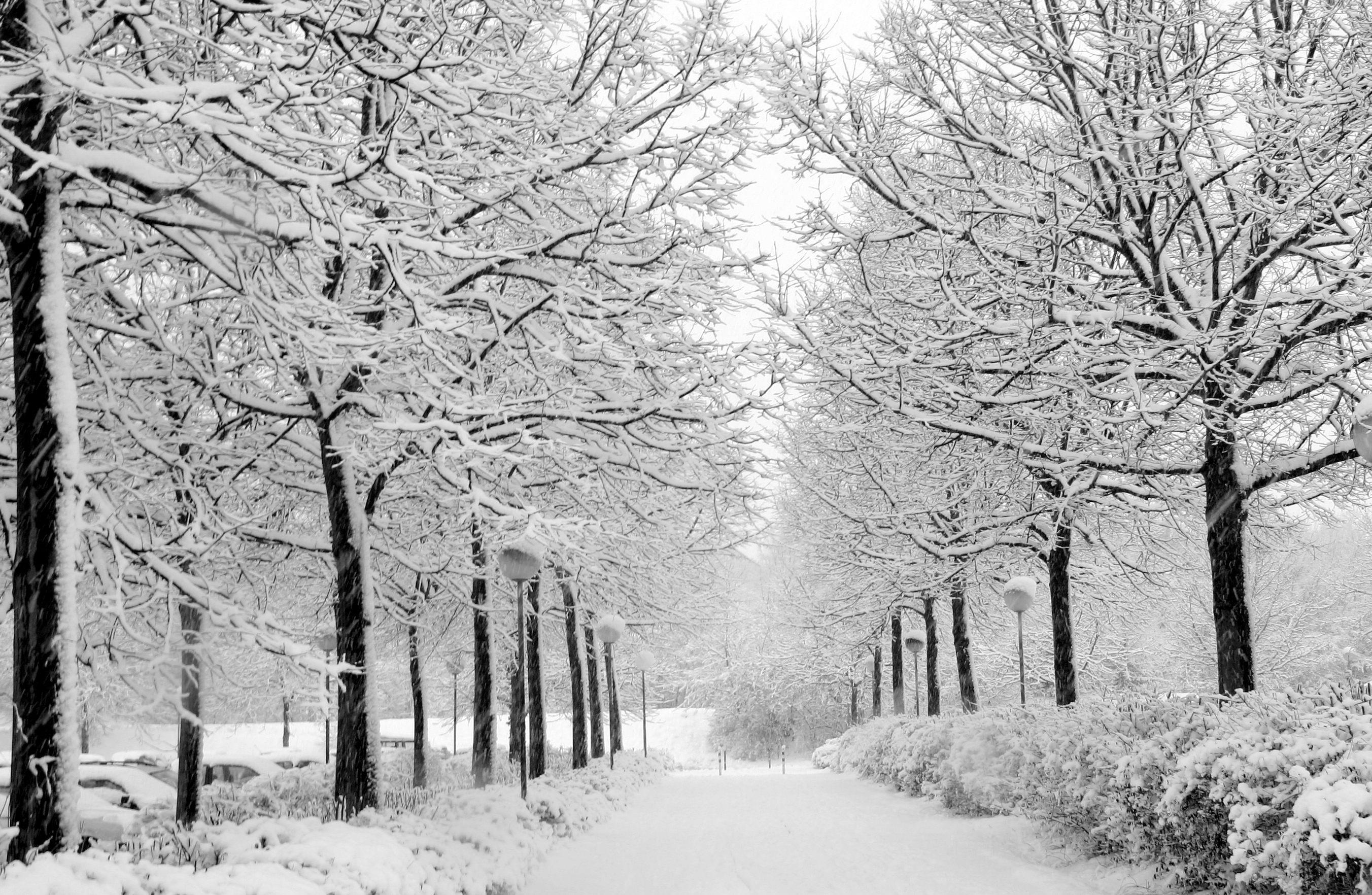 Top Wallpaper Home Screen Snow - tumblr_static_winter_wonderland  2018_334012.jpg