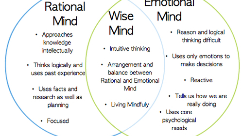 dbt skill – Wise Mind Worksheet