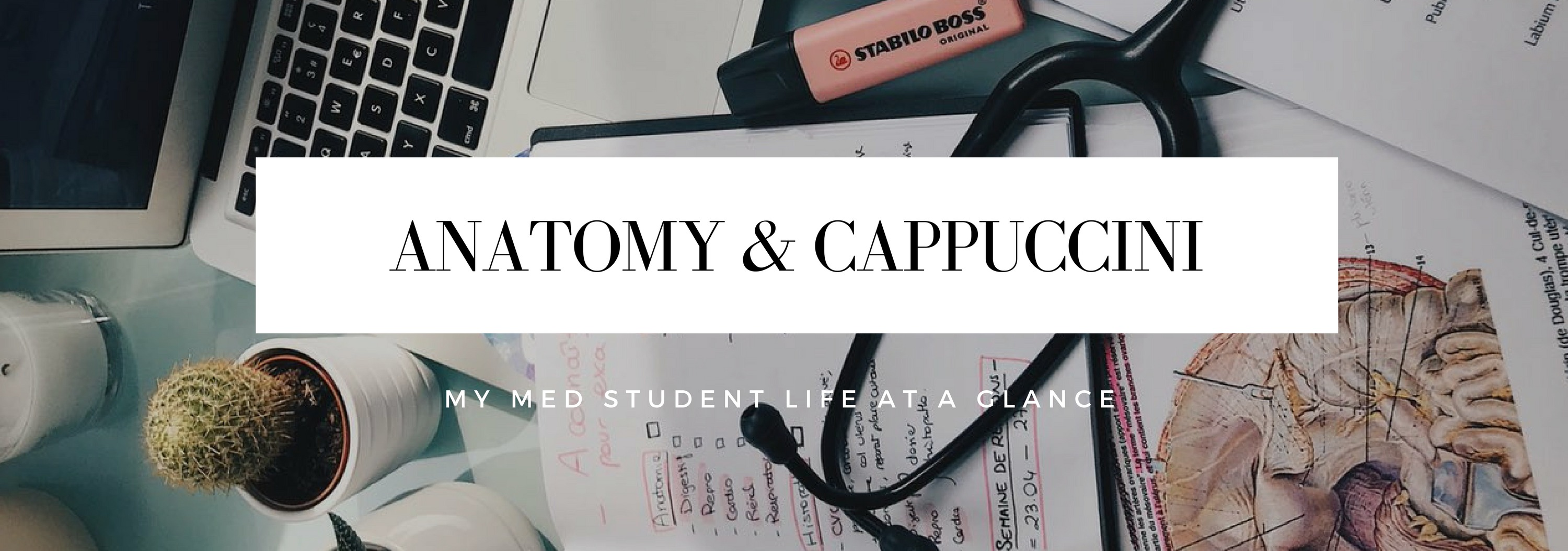MY study tips!!! - Anatomy & Cappuccini