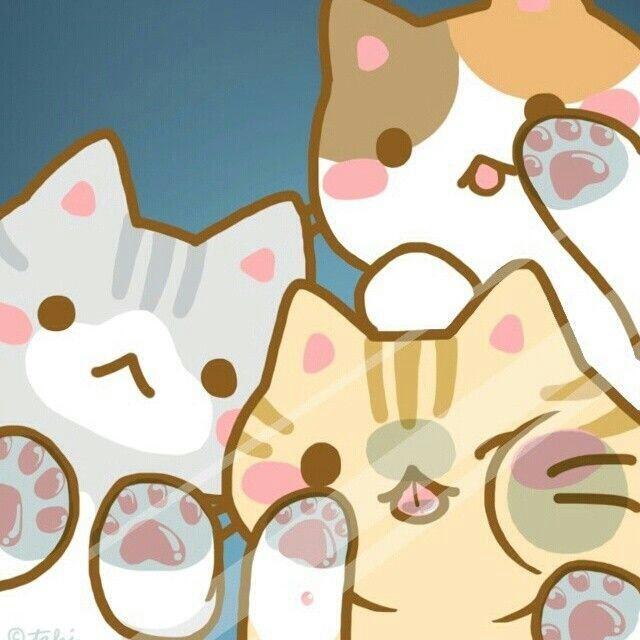 kawaii neko girl tumblr