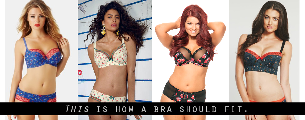 34D Breast Size  34D Cup Bra Size 34D Pictures Comparison
