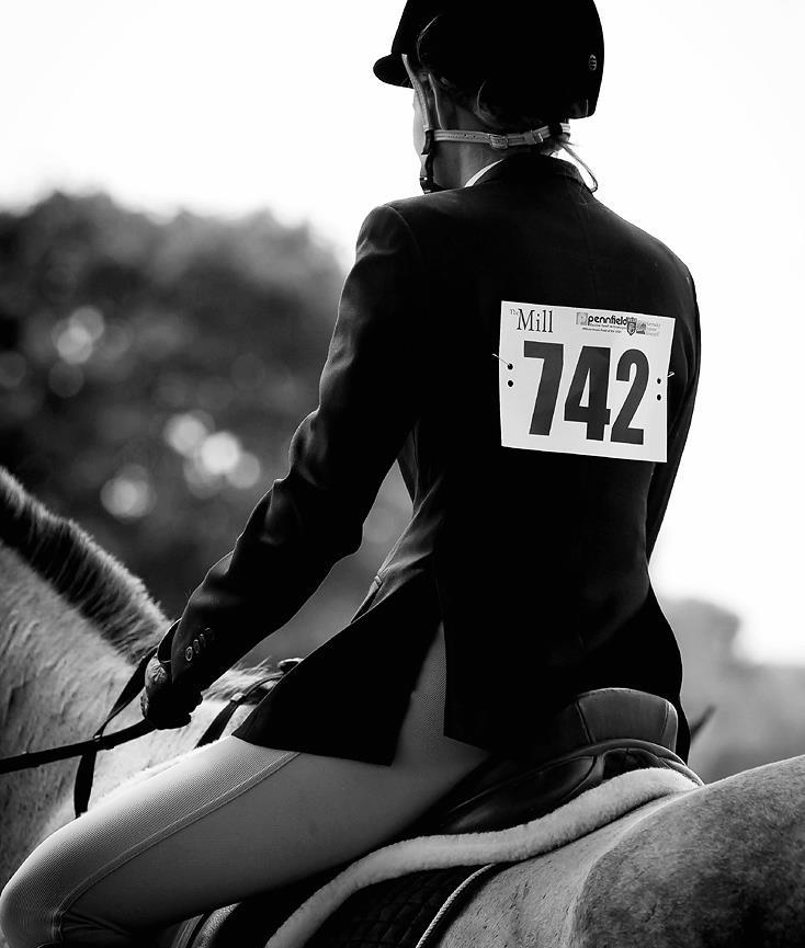 Always Horses