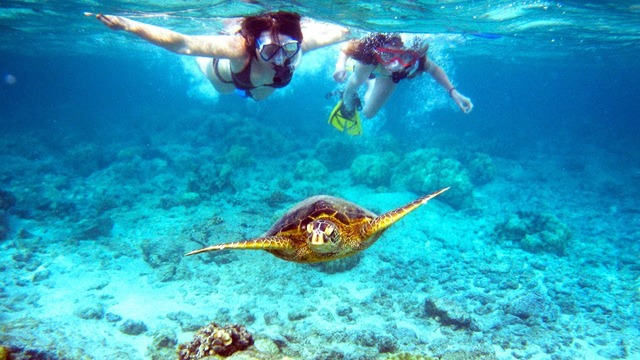 Break Away Belize Travel