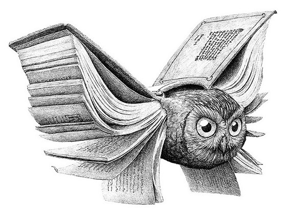 http://static.tumblr.com/cf41f1cd5eaf477ce64d3e0c3a1190c6/ew6j97u/rnfmohyos/tumblr_static_owl_of_minerva.jpg