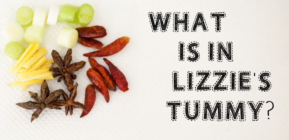 What is in Lizzie's Tummy?