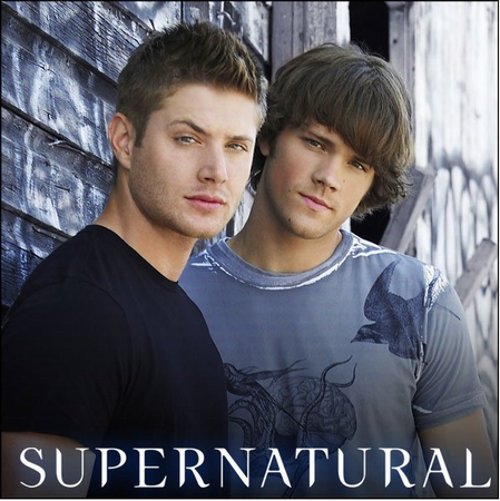 Supernatural RP Sam-dean-lrg