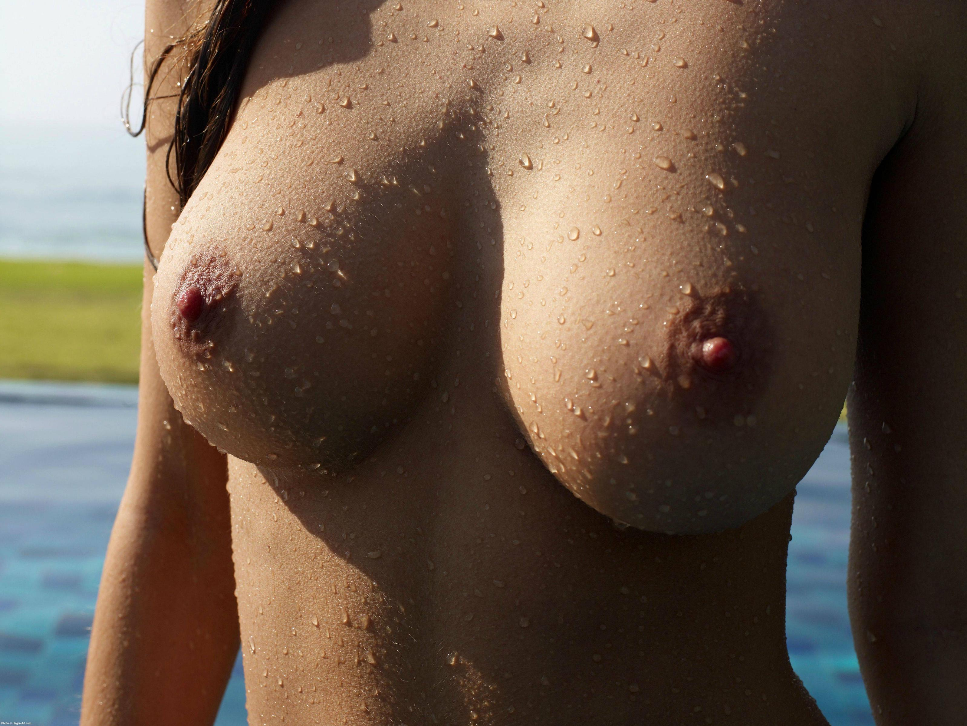 Tumblr shemale topless beach