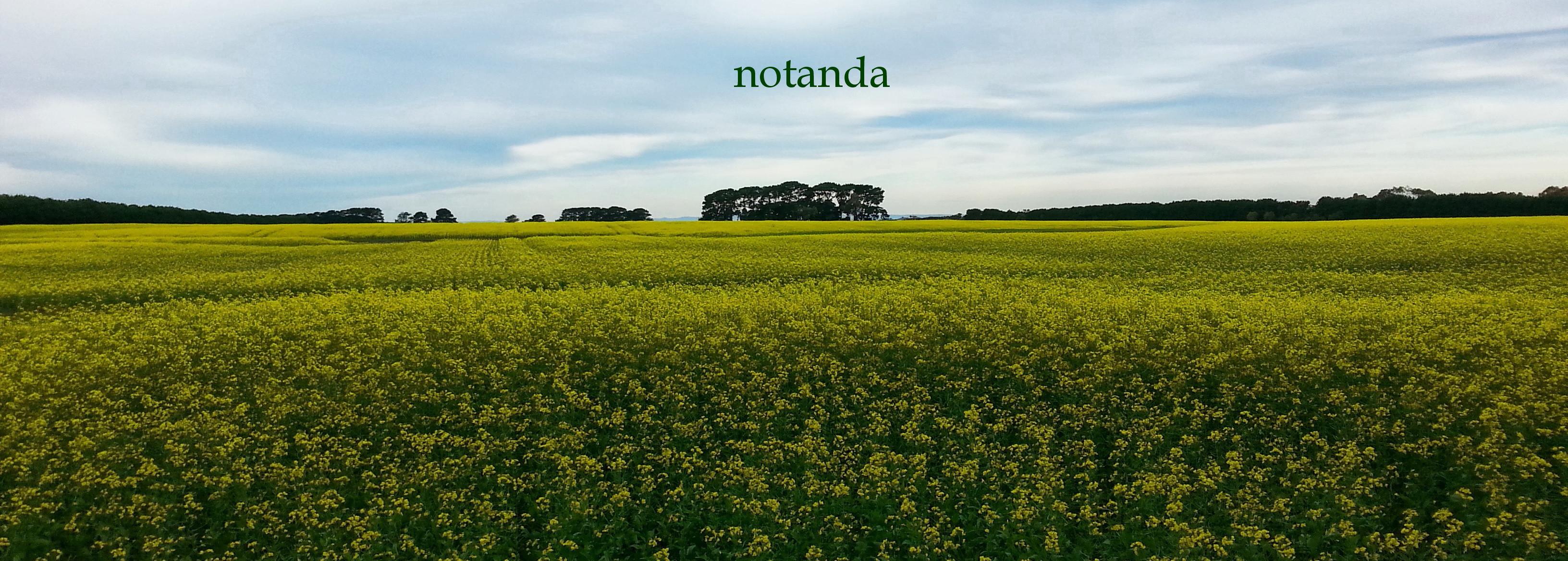 Notanda