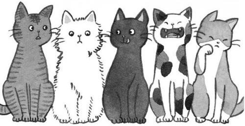 Czeshop Images Cute Cat Drawing Tumblr