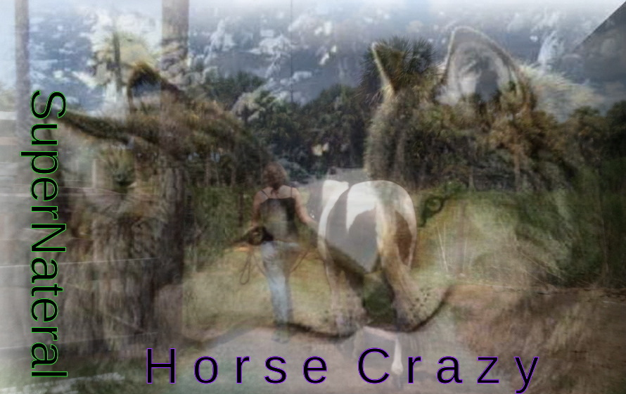 Supernatural Horse Crazy