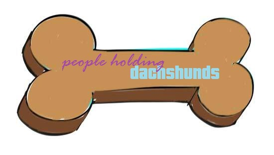 how to hold a dachshund
