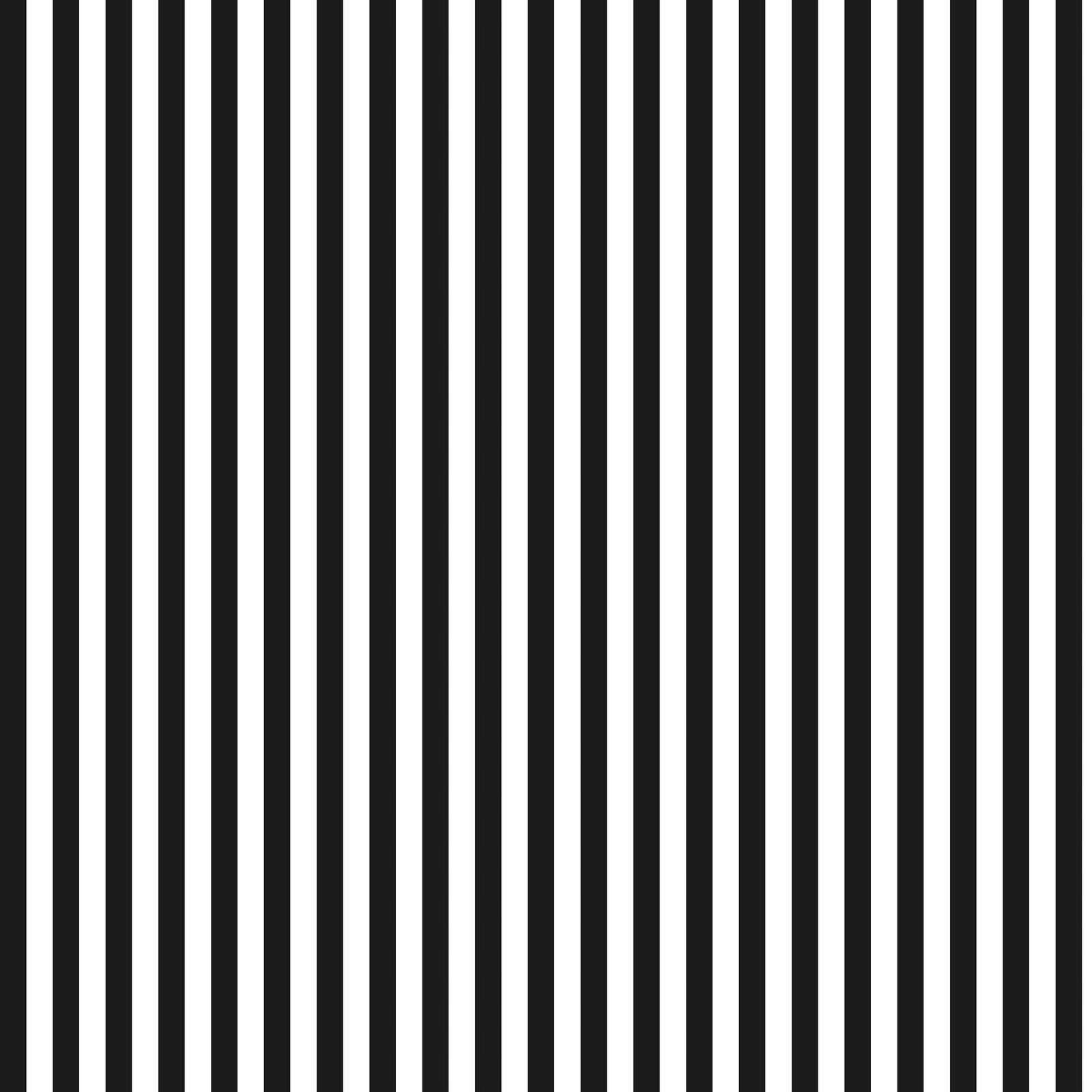 black and white stripes1jpg - photo #8