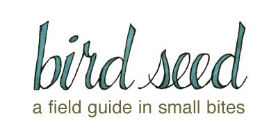 birdseed: a fieldguide in small bites
