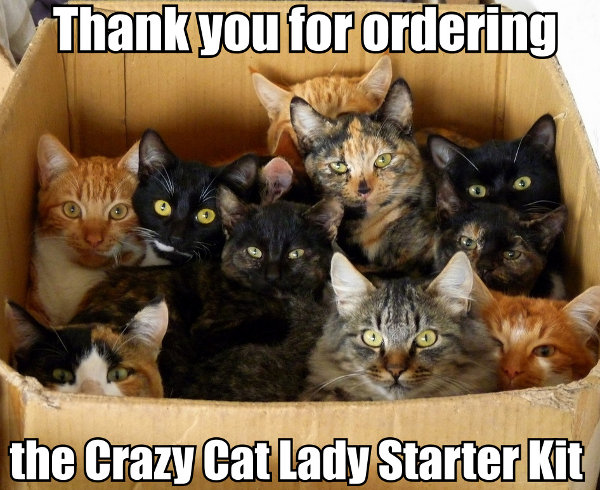 Bank Story from  JenneferV from TNT sees a good sign!  Thank-you-for-ordering-the-crazy-cat-lady-starter-kit