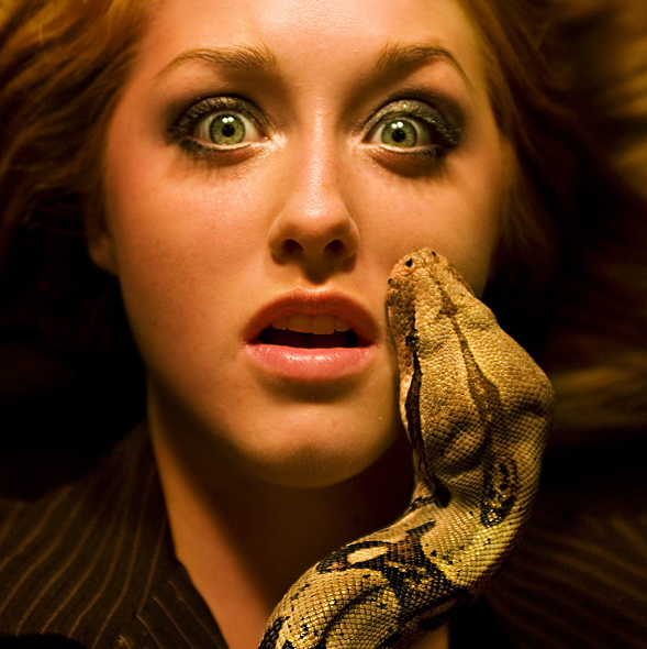 my ophidiophobia Ophidiophobia - the fear of snakes phobics avoid certain cities because they have more snakes phobics avoid certain cities because they have more snakes acrophobia - the fear of heights.