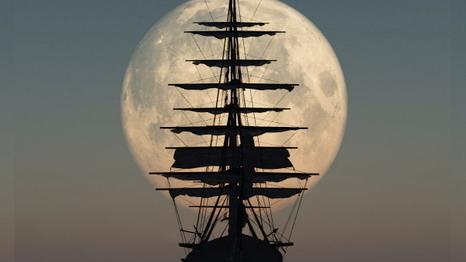 Pirate Tumblr