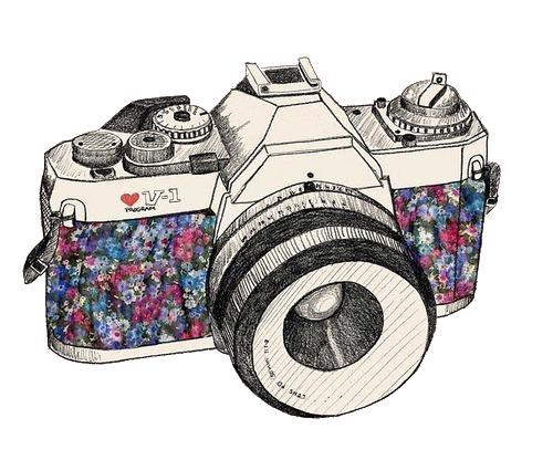Rosy vintage camera for Camere dwg