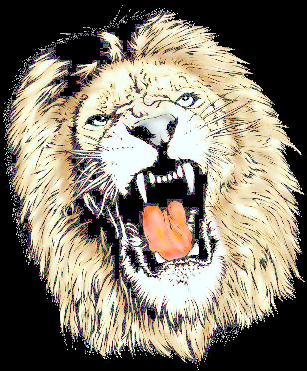 Lion Head Tumblr