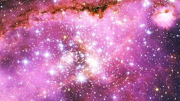 With pretty flowers and stars tumblr we are made of stars flowers and pretty things mightylinksfo