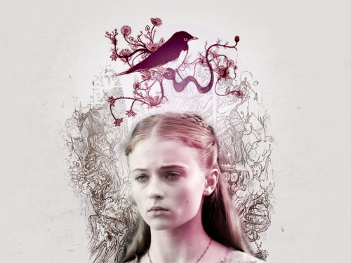 A Song of Ice and Fire.´Sansa&´Sandor.