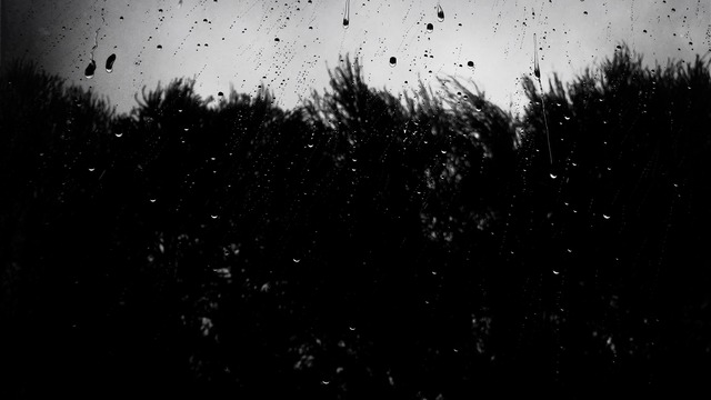 dark tumblr wwwpixsharkcom images galleries with a bite