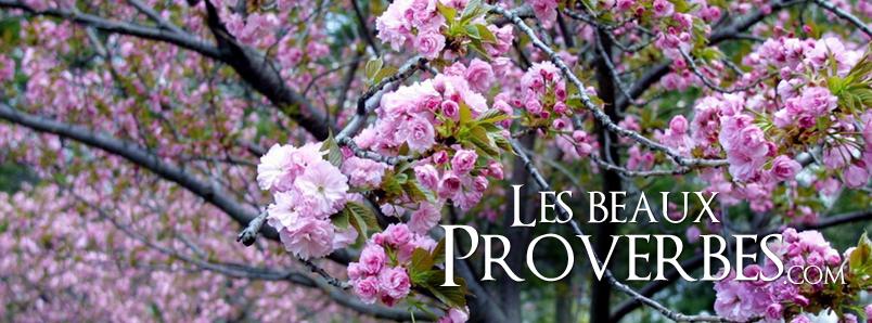 Les Beaux Proverbes