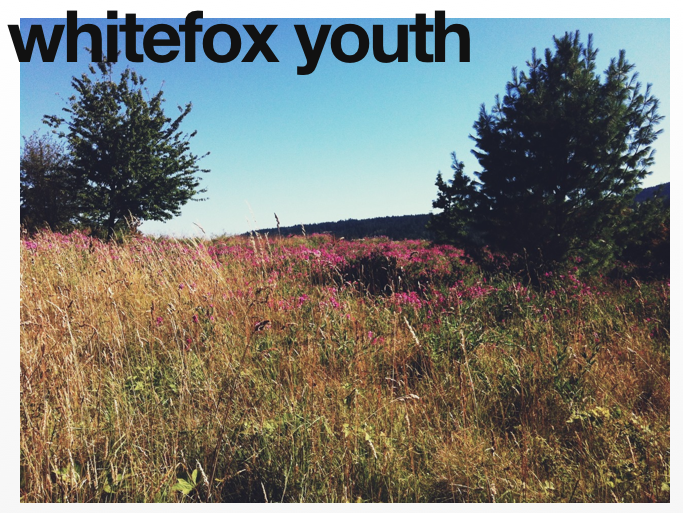 whitefox youth