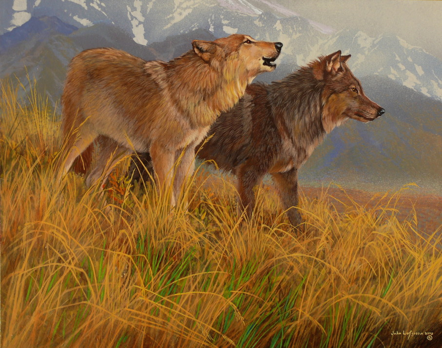 Never cry wolf farley mowat