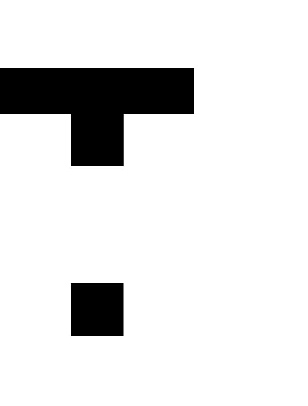 TOTEMIZE