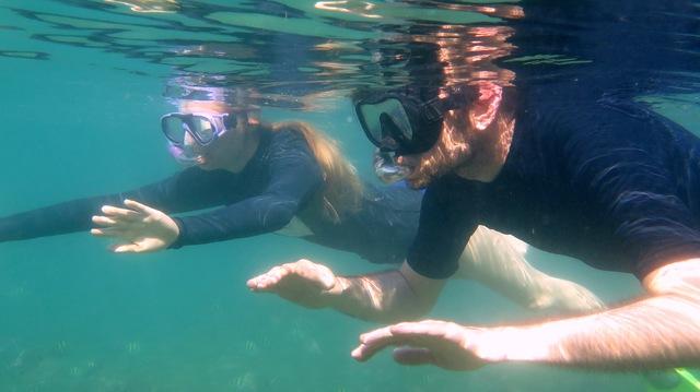 Tidal Tao Snorkeling Safaris