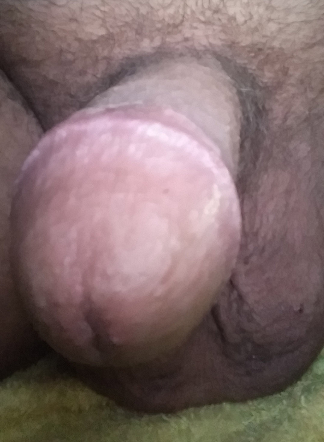 hosewives show dick slips