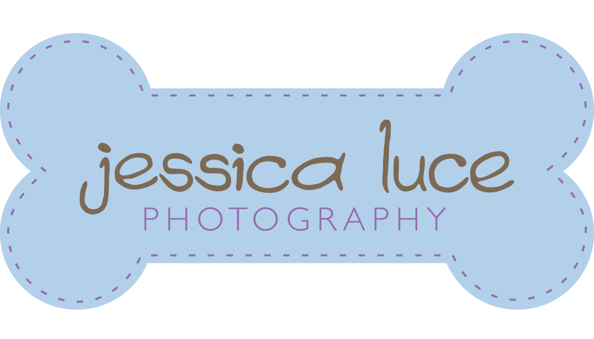 Jessica Luce Photography, Atlanta Dog Photographer