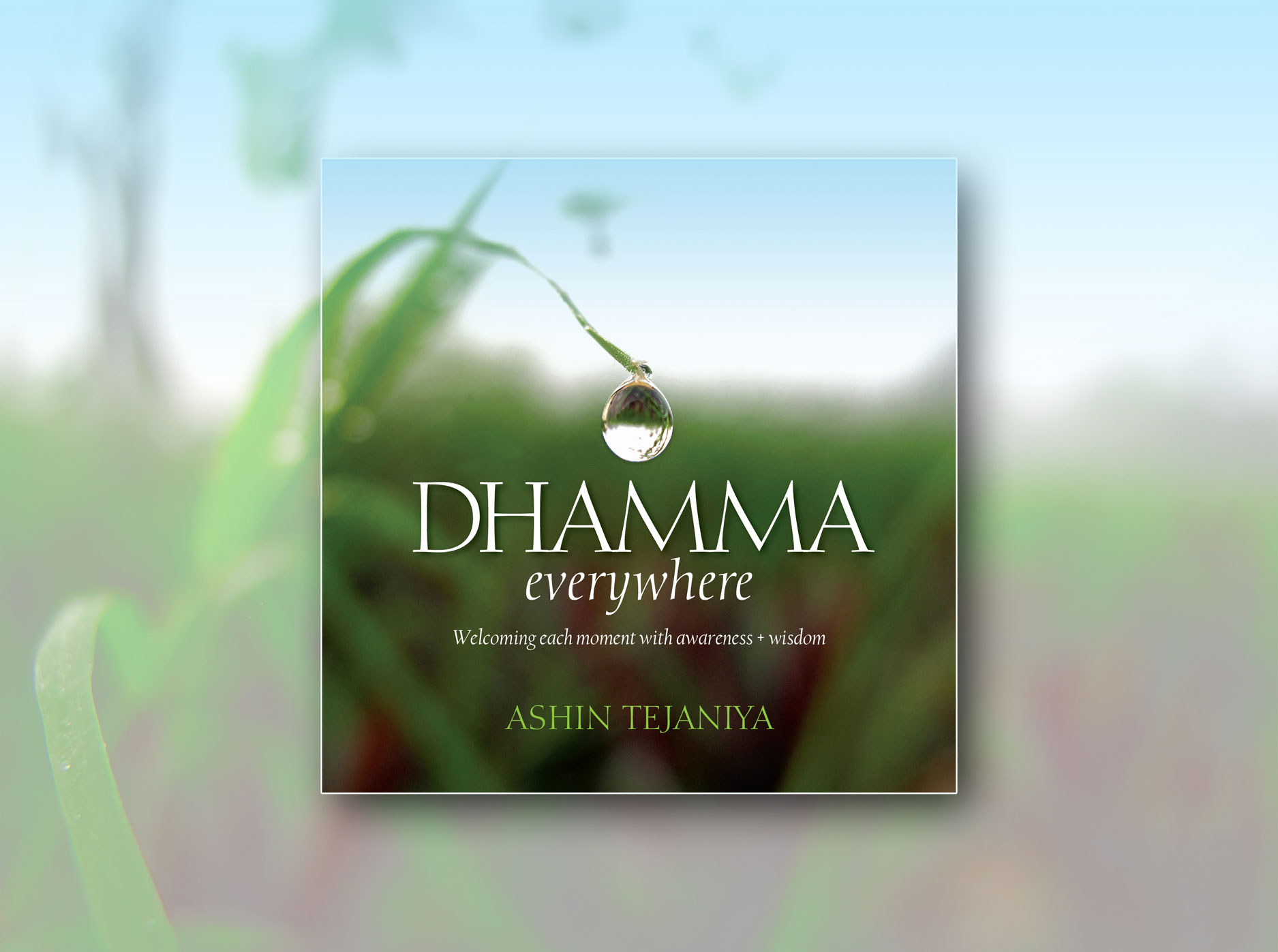 Dhamma Everywhere